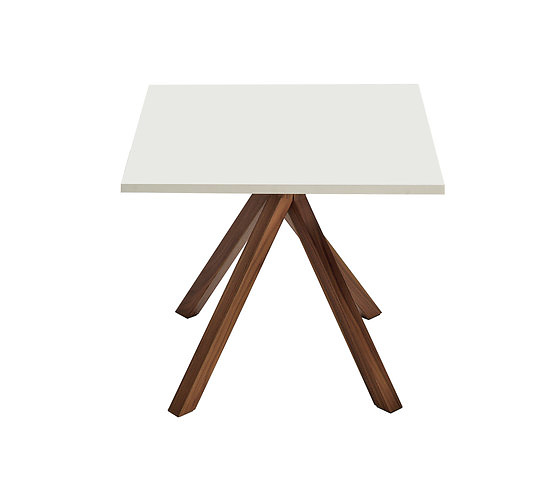 Egidio Panzera Grapevine Table Collection