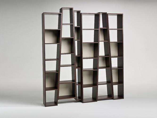 Alessandro Dubini Beat Bookcase