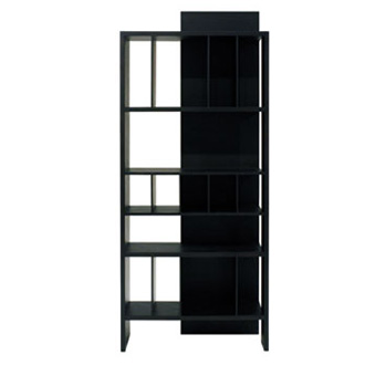 Antonia Astori Eileen Bookcase