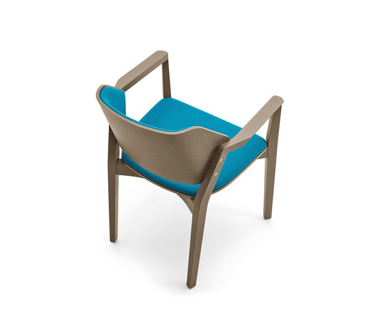 Christopher Coombes, Cristiana Giopato Turtle Chair
