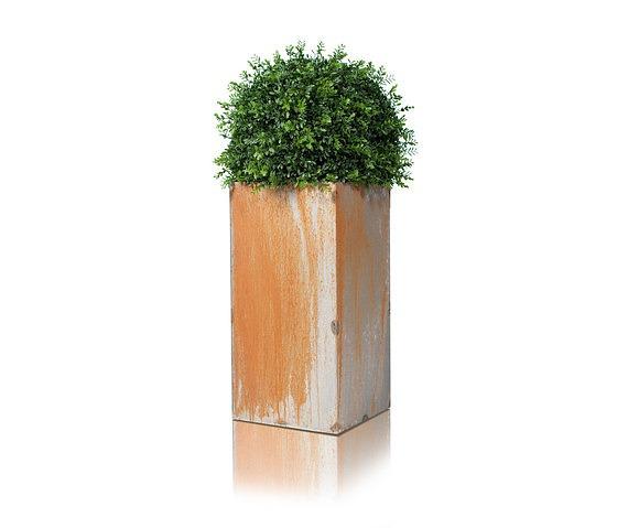 Cornelia Norgren Linné Pot