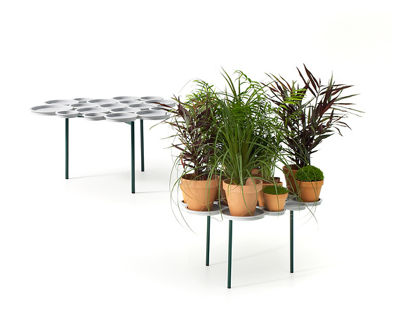 Luca Nichetto Green Pads Plant Stand