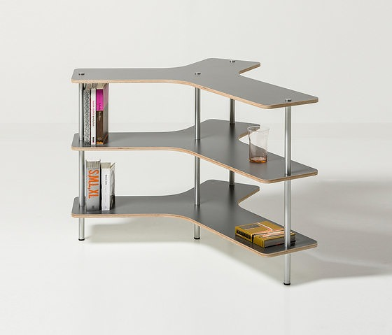 Robert Bronwasser Spine Shelf